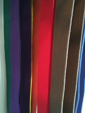 Belt fancy colors